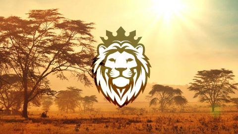 Sales pipeline Lion King graphic superimposed on an African savannah at sunrise